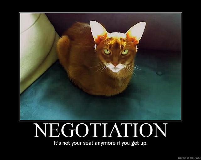 Negotiation catlike